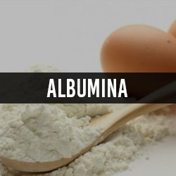 Albumina (Proteina do Ovo)